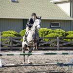 horse show photogaphy